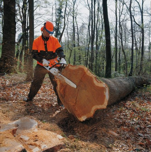 Best Commercial Professional ChainSaw